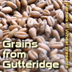 Grains from Gutteridge Cover Art