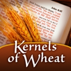 Kernels of Wheat podcast logo