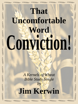 Cover of the e-book 'That Uncomfortable Word -- Conviction!'