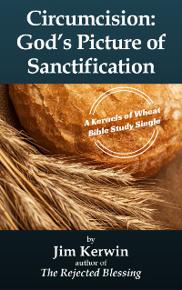Cover of the e-booklet 'Circumcision: God's Picture of Sanctfication' written by Jim Kerwin